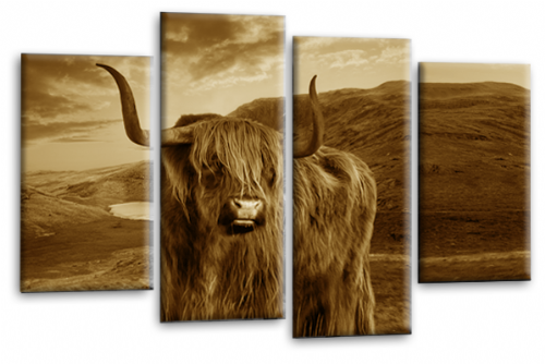 Scottish Highland Cattle Canvas Art Picture Sepia Brown Animal Split Wall Print